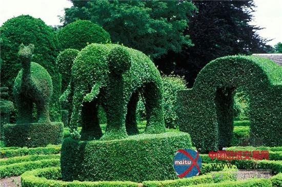 漫步全球九大奇妙花园 植物雕塑形态各异